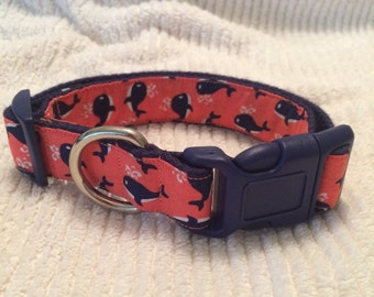 "Sz Medium - 1"" Width, 12-18"" Adjustable Dog Collar - Little Splash (C&N)"