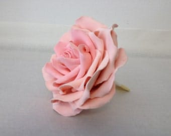 Pink clay rose