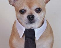 articles populaires correspondant costume de mariage de chien sur etsy. Black Bedroom Furniture Sets. Home Design Ideas