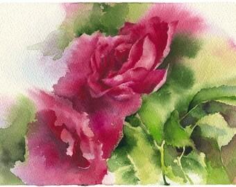 Watercolor rose painting - rose original painting print- flower painting - rose drawing