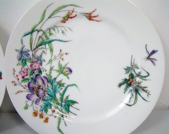 Set of 8 antique french Paris porcelain dessert plates. Hand painted flowers and butterflies. Polychrome handpainted glaze overlays.