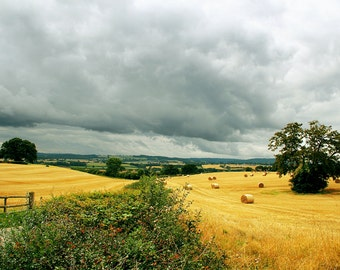 Shropshire Countryside, Photography Print - 12x8 inches