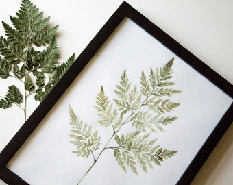 A3 Fern botanical handpainted watercolor print