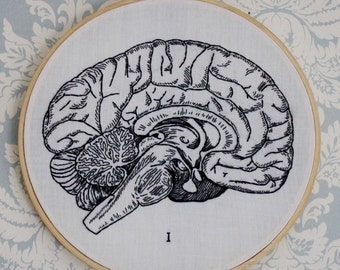 TTTPMM: Part 1, Brain Anatomy Embroidery