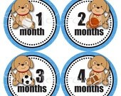 SALE Baby Monthly Stickers, Baby Shower Gift, Puppy Baby Sports Stickers, Milestone Stickers Baby Month Stickers, Boy Stickers B122