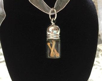 Antique Mouse Bone Bottle Necklace