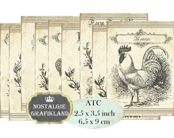 Farm Rooster Hen Eggs Chicken Poulet Le Coq Instant Download ATC digital collage sheet S092