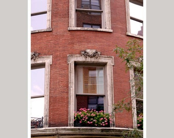 Window photography, flowers in windows art print 8x10, red brick building, architecture art, New York City window wall decor window wall art