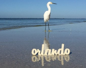 Orlando Sign - Small