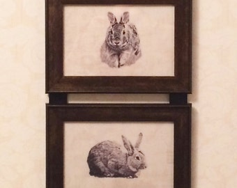 Rabbit Bunny Picture Frame Collage Hanging Wall Art Decor