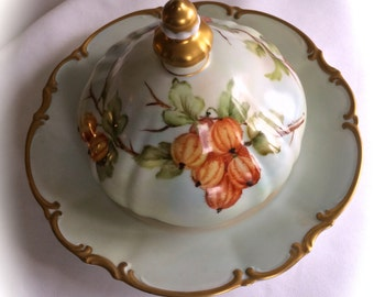 HUTSCHENREUTHER Hand Painted Covered DOME Butter Cheese Dish Gorgeous