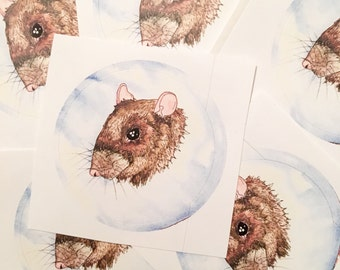 Rat Portrait Sticker