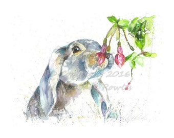 A4  Easter Rabbit / Lop eared bunny Wildlife watercolour art print by nicola jane rowles