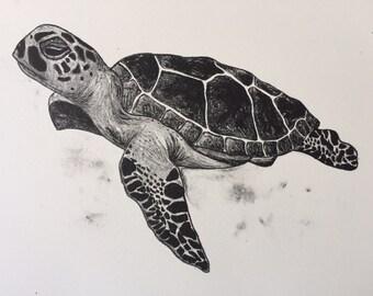 Turtle lithograph print