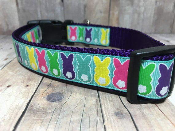 Heart Heavy Black Dog Collar