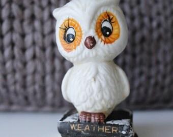 Retro kitsch weather owl