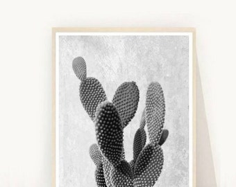 Cactus Wall Art, Printable Cactus,  Cactus Photo, Printable Art, Minimalist, South Western, Wall Decor, Instant Download,