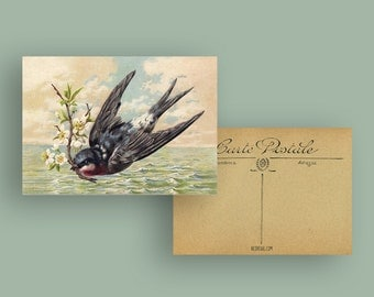 Postcard Swallow & Sea, Vintage, Birthday Card, Greeting Card, Best Wishes