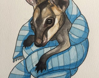 Snug swamp wallaby joey A4 watercolour painting.