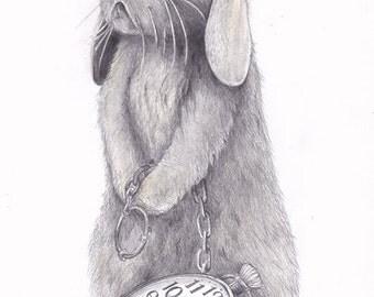 Bunny Rabbit Art - Bunny Rabbit Illustration - Art Prints - Nursery Art Prints - Wall Art - Children's Art - A4