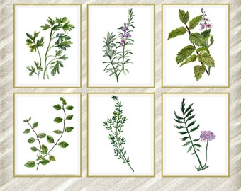 "Watercolor Herbs Print: ""HERB WALL ART"" Kitchen wall decor kitchen herbs art  botanical kitchen prints  kitchen poster Herb Poster set of 6"