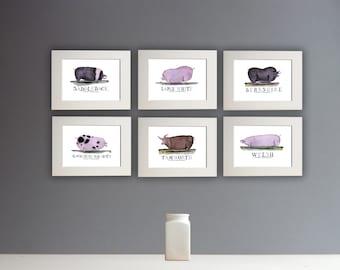 Fun Pig Prints - set of 6 unframed A4 prints