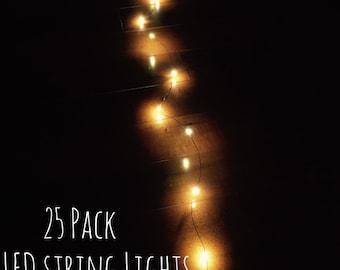 25 Mason Jar Lights, Firefly Lights, String Lights, silver string lights, Wedding Lights, Rustic Lighting, LED Lights, Decorative Lights