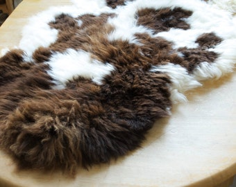 Beautiful Jacob Rare Breed Sheepskin - Tanned In Devon