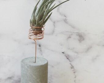 Concrete plant holder with copper element / airplants / Tillandsias / air plant / vase