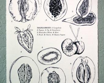 Vagina Fruits, Drawing, 8x10