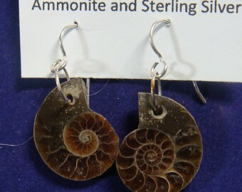 Mesozoic Era Fossil Ammonite and Sterling Silver Earrings #12