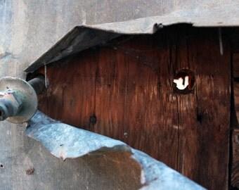 Abandoned Metal and Wood