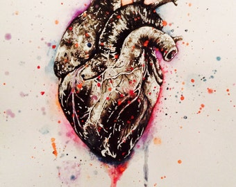 Anatomical Heart Drawing With A Fun Burst Of Colour (12x8inches)