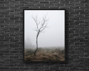 Tree Photo - Misty Photo - Fog Photo - Fields Photo - Foggy Landscape - Forest Print - Vertical - Nature Wall Art - Nature Wall Decor