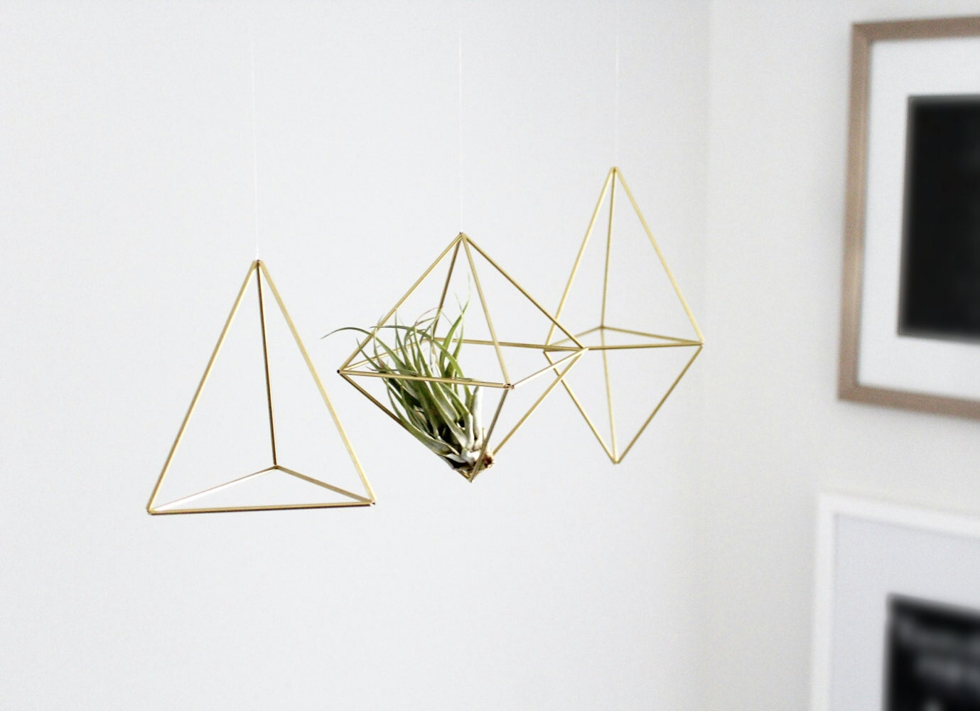 Set Of 3 Small Himmeli Air Plant Holder Geometric Wall Prism