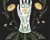 Dandelion and Hyacinth - Print