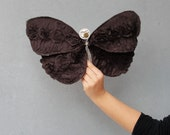 Ojo de Pavo Real Butterfly - Home Decor