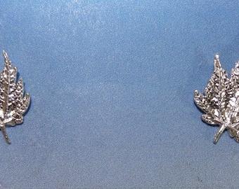 Medium Maple Earrings