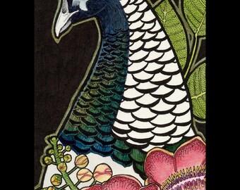 Lady Amherst's Pheasant and Shorea - Original Art