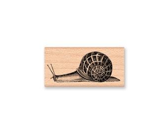 SNAIL RUBBER STAMP~Vintage Snail Illustration~Slow Snail Mail~Delay Belated~Slug~Wood Mounted Stamp~Mountainside Crafts (48-26)