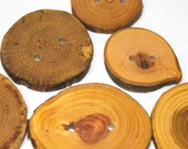 Handmade Tree Branch Wood Buttons, Natural Wooden Buttons, Mixed Woods in Multiple Sizes, Set of 6