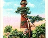 New Jersey Vintage Postcard - Barnegat Light (Unused)