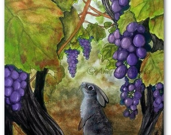 Wildlife Wonders Cottontail Rabbit - Vineyard Grape Vines - Art Prints by Bihrle wd126