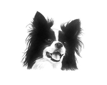 Pet Portrait Custom