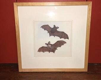 1970 FRAMED BATS lithograph original vintage flying bat print  - ready to hang for halloween decor