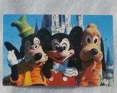 Vintage Walt Disney World Postcard Disney Productions Vintage Souvenir, Mickey Mouse, Goofy, Pluto