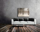 Large Canvas Art, Pine Forest Canvas, Rustic Canvas Decor, Brown, White, Wall Art Canvas, Nature Photography