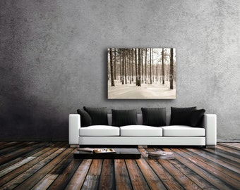 Large Canvas Art, Pine Forest Canvas, Winter Art, Brown, White, Wall Art Canvas, Nature Photography