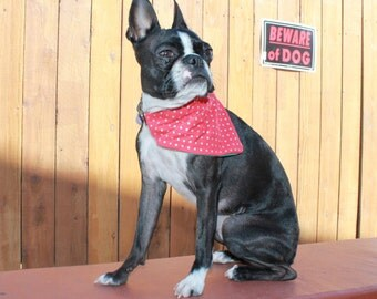 ONE Slide Over Collar Dog Bandana- REVERSIBLE Red Dots and Flowers.. Small- Medium Size Dogs.