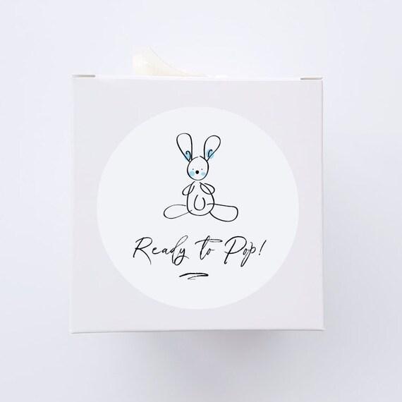 READY TO POP 60mm Baby Rabbit Stickers | Minimalist, Monochrome, Baby Girl, Girl, Labels, Adhesive, Bonbonerie, Baby Shower